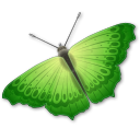 128x128px size png icon of Butterfly