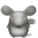 128x128px size png icon of Chinchilla