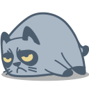 128x128px size png icon of cat grumpy