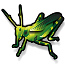 128x128px size png icon of Grasshopper