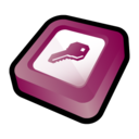 Microsoft Office Access Icon