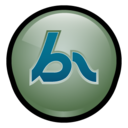 Macromedia Breeze MX Icon