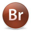 Bridge CS3 Icon
