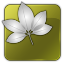 128x128px size png icon of VersionCue