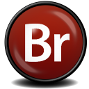 Adobe Bridge CS 3 Icon