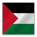 128x128px size png icon of Palestine flag