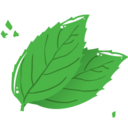 128x128px size png icon of mint leaf