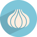 128x128px size png icon of garlic