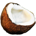 128x128px size png icon of coconut