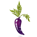 128x128px size png icon of Latex Carrot