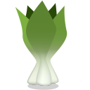 128x128px size png icon of bok choy