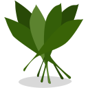 128x128px size png icon of greens