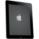 iPad Side Apple Logo Icon