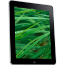 iPad Side Grass Background Icon