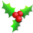 128x128px size png icon of Holly light