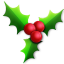 128x128px size png icon of Holly