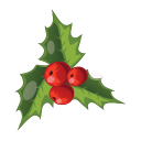 128x128px size png icon of Christmas Mistletoe