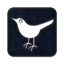 128x128px size png icon of Twitter bird2 square