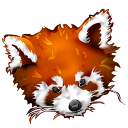 128x128px size png icon of Firefox panda red