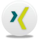 128x128px size png icon of Xing