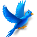 128x128px size png icon of Flying bird