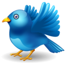 128x128px size png icon of twitter bird landing