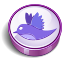 twitter bird sign purple Icon