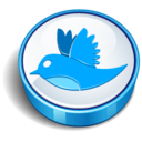128x128px size png icon of twitter bird sign