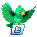 128x128px size png icon of twitter flying green