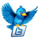 128x128px size png icon of twitter flying