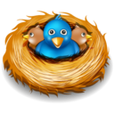 128x128px size png icon of twitter nest