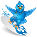 128x128px size png icon of twitter surf