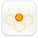 128x128px size png icon of Magnolia