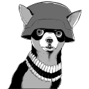 128x128px size png icon of Army Chihuahua
