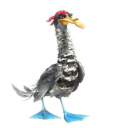 128x128px size png icon of Seagull