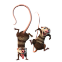 128x128px size png icon of Crash and Eddie