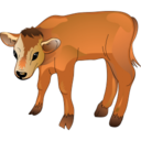 128x128px size png icon of Calf