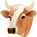 128x128px size png icon of Cow head