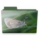 128x128px size png icon of butterfly folder