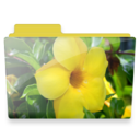 128x128px size png icon of flower folder