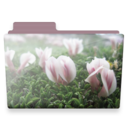 128x128px size png icon of flowers folder