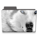 128x128px size png icon of wolf folder