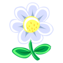 128x128px size png icon of White Flower