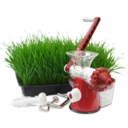 Hand wheatgrass juicer Icon