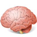 128x128px size png icon of Body Brain