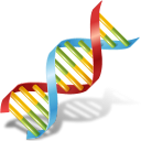 128x128px size png icon of Body DNA