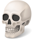 128x128px size png icon of Body Skull