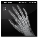 128x128px size png icon of Documents X Ray Hand