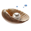 128x128px size png icon of Pearl