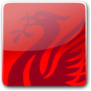 128x128px size png icon of Liverbird Button
